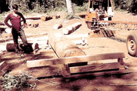 Paraguay portable sawmill
